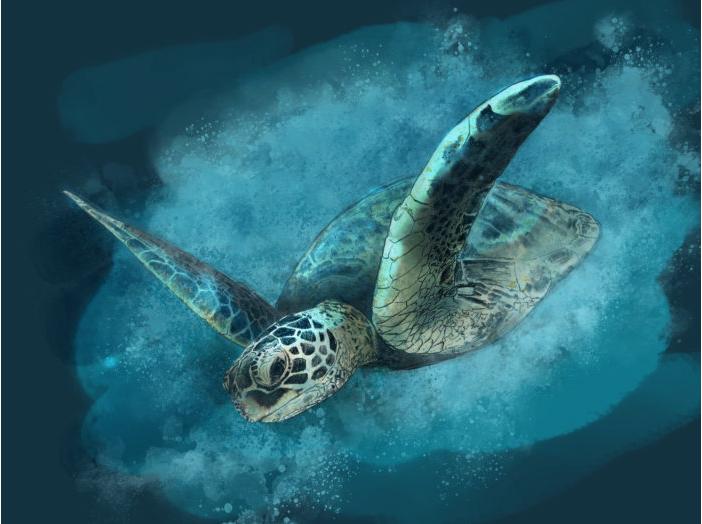 arte feita no novo app de pintura e desenho da Adobe pelo artista Paul Trani.